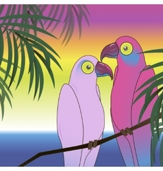 Two colourful parrot bird background vector