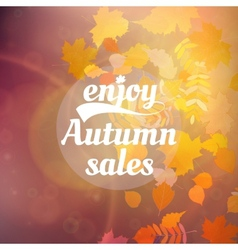 Autumn sale design template vector