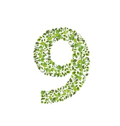 Spring green leaves eco number 9 vector