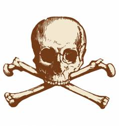 Skull and cross bones vector