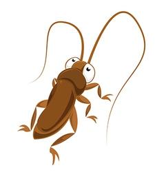 Big eyed cockroach vector