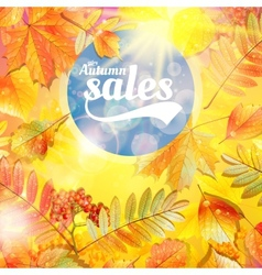 Autumn sale fall yellow leaves nature background vector