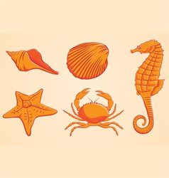 Sea animal orange vector