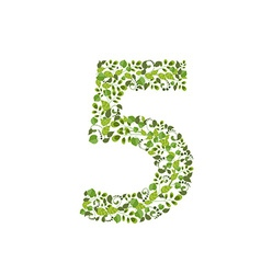 Spring green leaves eco number 5 vector