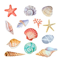 Watercolor set of seashells vector