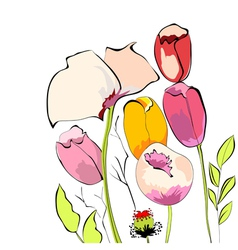 Tulips with poppy flowers vector