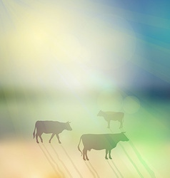 Cow set silhouette on sunny sky and grass vector