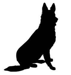 German shepherd silhouette vector