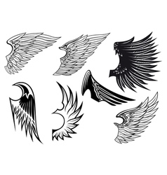 Heraldry wings set vector