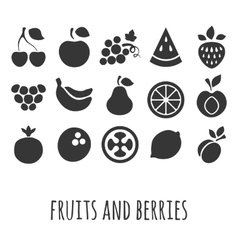 Icon set with other fruits and berries vector