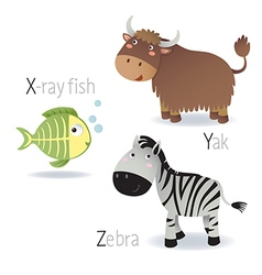 Alphabet with animals from x to z vector