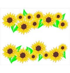 Sunflower background vector