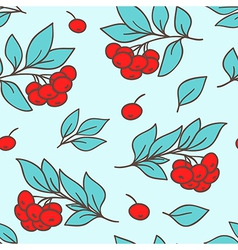 Seamless pattern with red rowan berry vector