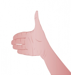 Person's hand vector
