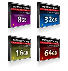 Compact flash memory cards vector