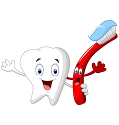 Dental tooth and toothbrush cartoon character vector