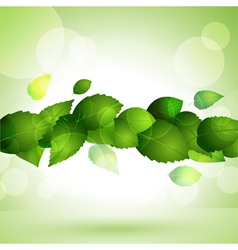 Lush green leaves vector