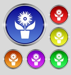 Flowers in pot icon sign round symbol on bright vector