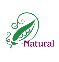Natural food emblem or label vector