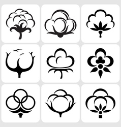 Cotton icons set vector