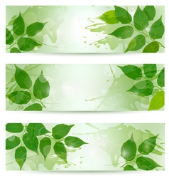 Three nature background with green spring leaves vector