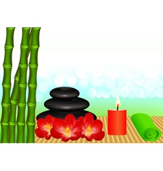 Background for spa with bamboo vector