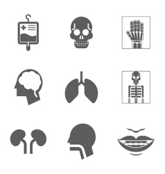 Medical care and health isolated icons vector