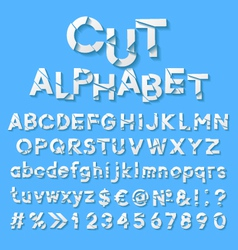 Paper alphabet with cut letters vector