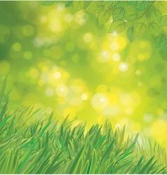 Green background vector