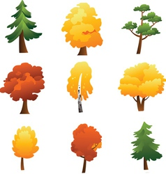 Set of trees - autumn vector