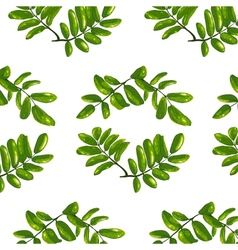 Rhombic leaves seamless pattern vector