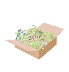 Fresh manila tamarinds in a shipping box vector