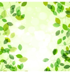 Summer branches with fresh green leaves vector