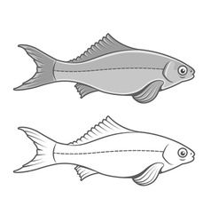 Silhouette of fish contour vector