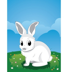White rabbit on lawn2 vector