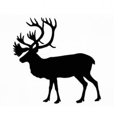 Silhouette of a caribou vector