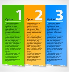 Colorful torn paper progress option label vector