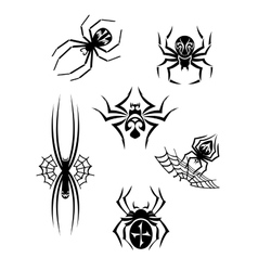 Black danger spiders set vector