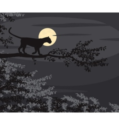 Leopard moon vector