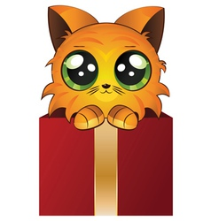 Red kitten in a box vector