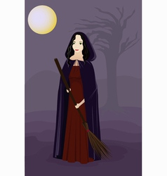 Witch in the night vector