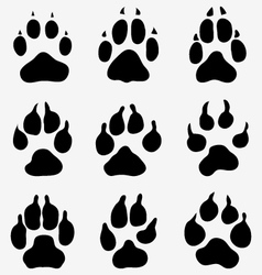Paw of dogs vector
