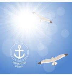 Shining summer sun with seagulls vector