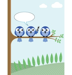 Bird tree phone vector