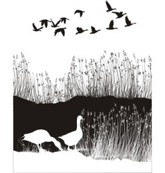 Background with reeds and wild geese vector