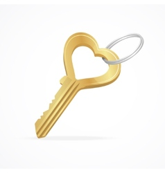 The key heart and love vector