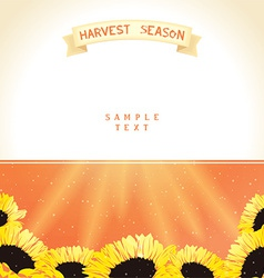 Harvest season with sunflowers vector