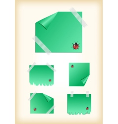 Stickers with ladybirds and scotch vector