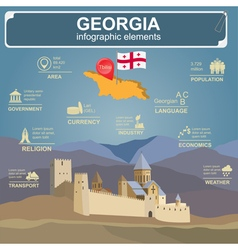 Georgia infographics statistical data sights vector