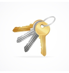 Golden silver bronze metal keys bunch vector
